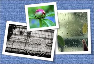 rainning1