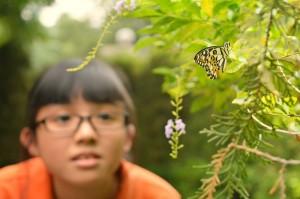 姓名:洪于晋 S2S4 敘述:《渴望》:渴望有蝴蝶美丽的外表,渴望像蝴蝶自由自在的飞翔。