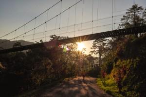 姓名:萧玮宁 S2C3 敘述:《晨光里的吊桥》