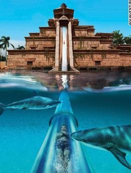 阿联酋迪拜的水世界冒险乐园
